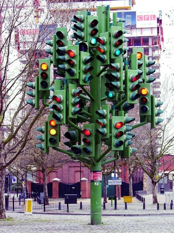 albero-con-tanti-semafori