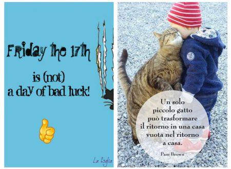 Il binomio venerdì 17 + giornata nazionale del gatto